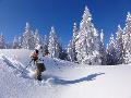 Schneeschuhwandern, Allgäu, Oberstdorf, Bergführer, Alpine Zeiten, Home