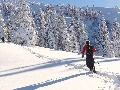 Skitouren, Allgäu, Oberstdorf, Bergführer, Alpine Zeiten, Home