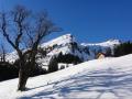 Geführtes Schneeschuhwandern, Allgäu, Oberstdorf, Bergführer, Alpine Zeiten, Schneeschuh- Tagestour