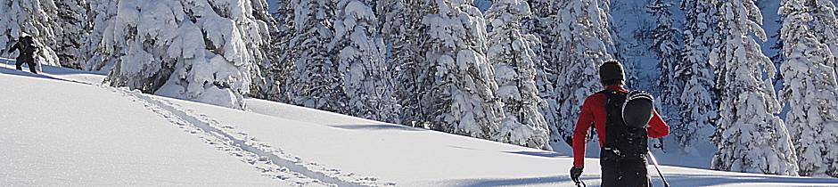 Geführte Skitouren, Alpinschule, Bergführer, Allgäu, Oberstdorf, Alpine Zeiten 7