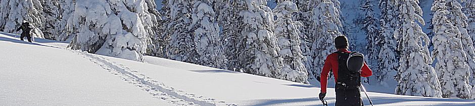 Geführte Skitouren, Alpinschule, Bergführer, Allgäu, Oberstdorf, Alpine Zeiten 10